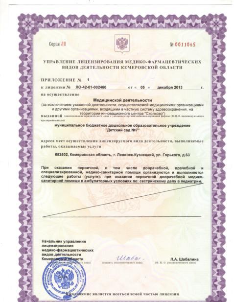 лицензия 3 (478x617)